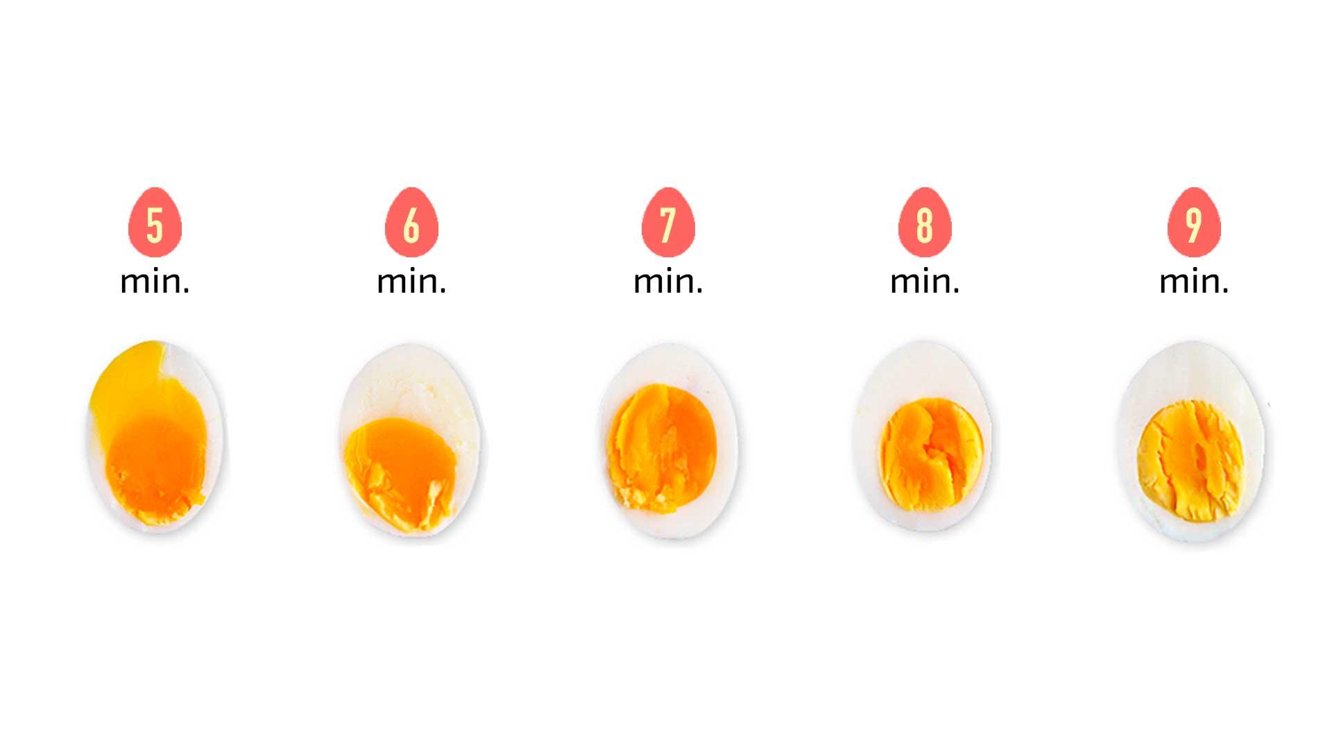 image Ela quer um ovo bem grande